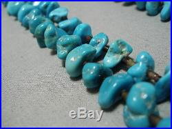 Incredible Navajo Graduating Turquoise Blue Brown Shell Heishi Necklace Old
