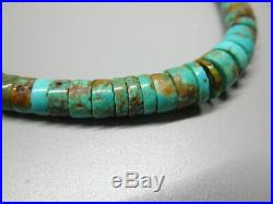 Old Blue Green Number 8 Mine Navajo Spiderweb Turquoise Heishi Necklace