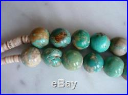 Old Vintage Santo Domingo Royston Turquoise Round Bead Shell Heishi Necklace